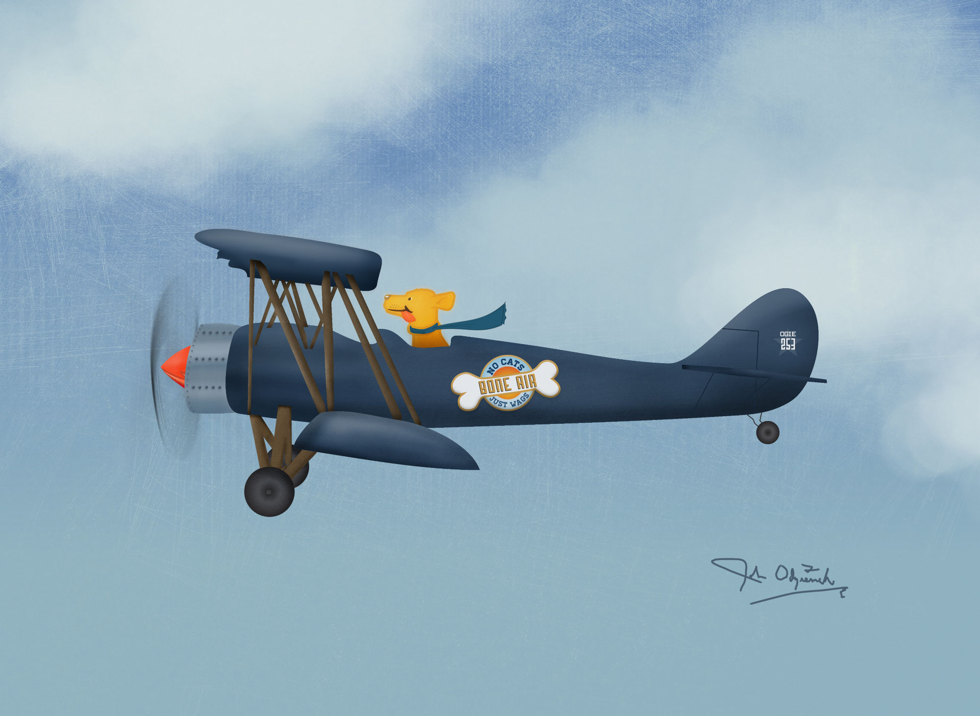 Odziemek Biplane Illustration